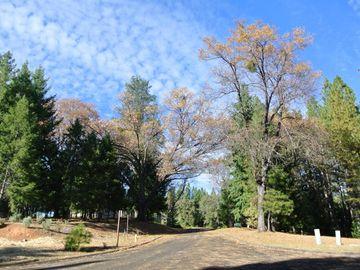 4535 Porta Venare Court, Foresthill, CA, 95631,