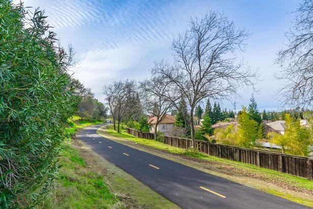 221 Cascade Falls Drive