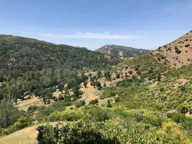 1460 State Hwy 16, Rumsey, CA, 95679,