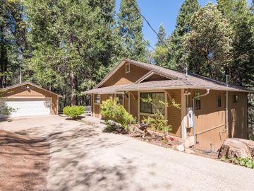5361 MICHELLE Lane, Camino, CA, 95709,