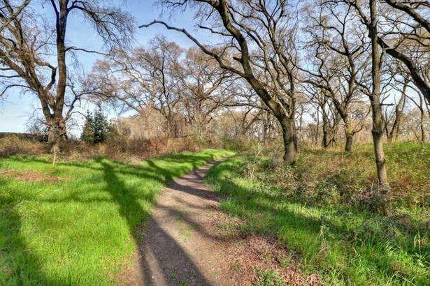 8675 River Road