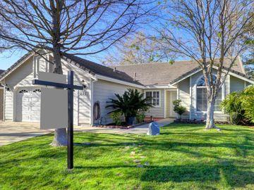 9227 Summer Tea Way, Elk Grove, CA, 95624,