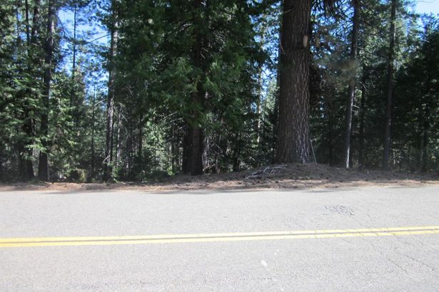 9986 GRIZZLY FLAT Road