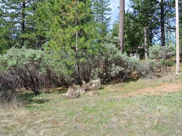 1 Todd Valley Road, Foresthill, CA, 95631,