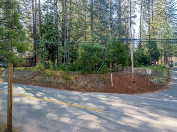 0 Grizzly Flat Rd Lot 119, Grizzly Flats, CA, 95636,