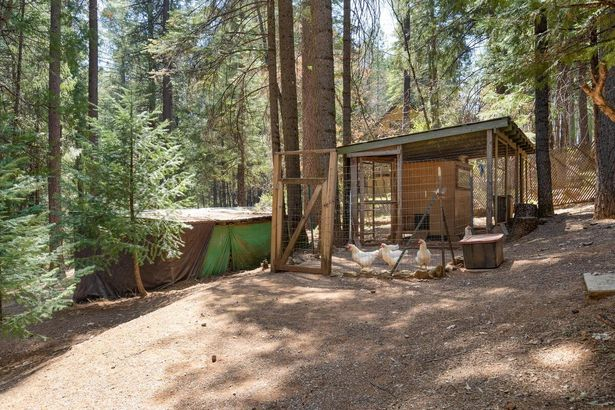 5058 Sierra Springs Drive
