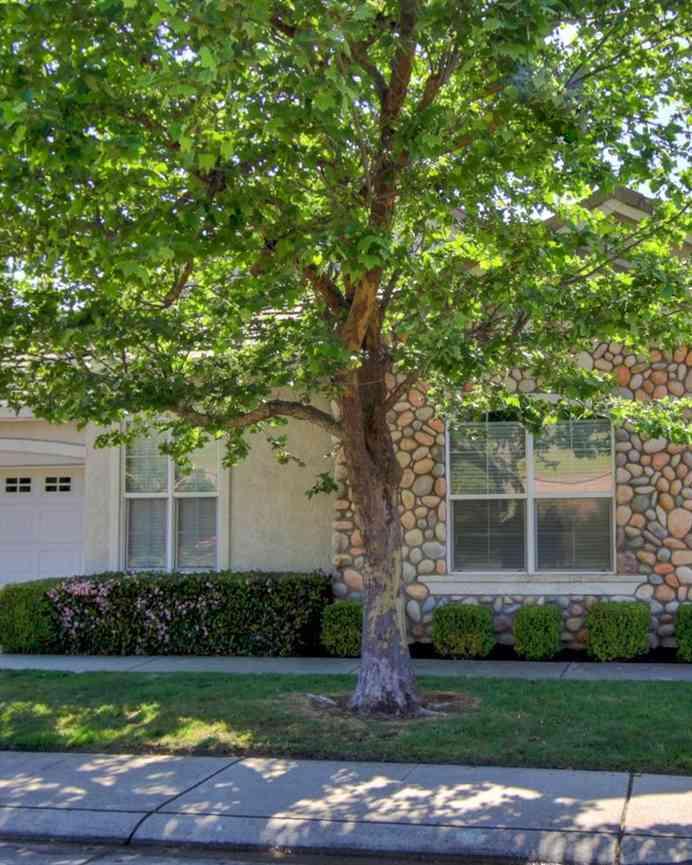 1129 Galston Drive, Folsom, CA, 95630,
