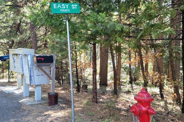 3101 Easy Street