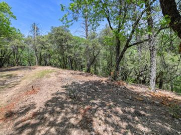 3 Forest Lake Place, Weimar, CA, 95736,