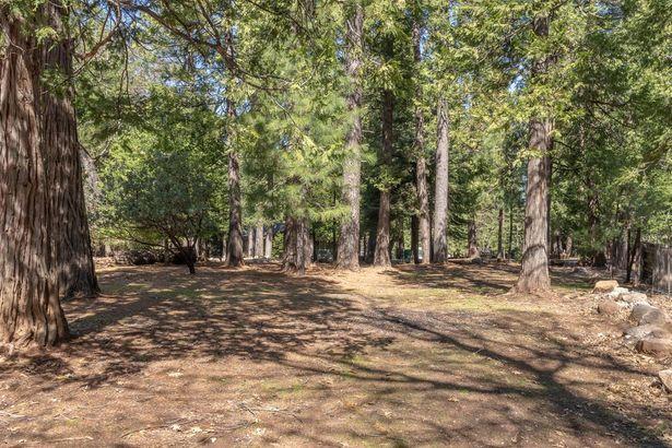 5820 Lynx Trail