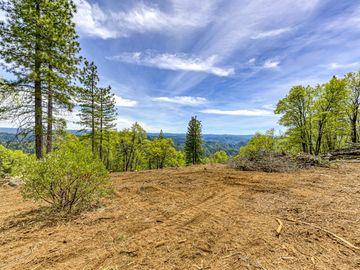 6420 Hidden Treasure Road, Foresthill, CA, 95631,