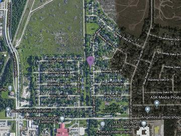 12403 Frazier River Drive, Houston, TX, 77050,