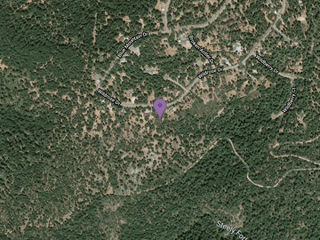 5719 WILDROSE Drive, Grizzly Flats, CA, 95636,