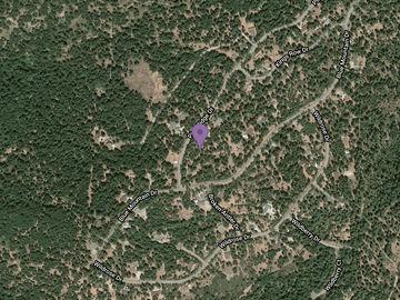 5540 Pine Ridge Drive, Grizzly Flats, CA, 95636,