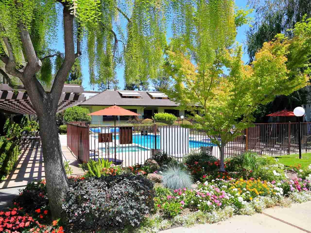 Swimming Pool, 2140 Santa Cruz Avenue #E110 Menlo Park, CA, 94025