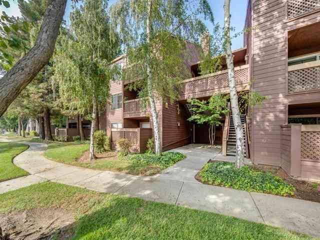 834 Catkin Court, San Jose, CA, 95128,