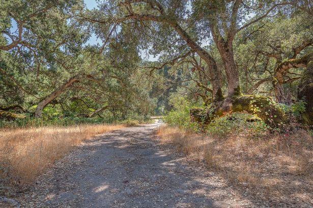 34180 Robinson Canyon Road