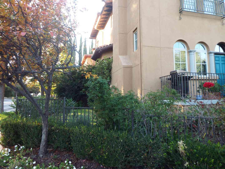 169 Cuesta Drive, Los Altos, CA, 94022,