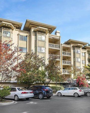 3715 Terstena Place #204 Santa Clara, CA, 95051