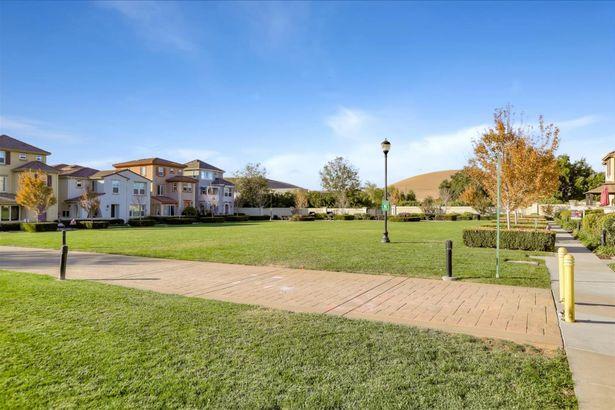 2875 Hoya Common