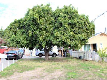 240 Parmer Avenue, San Jose, CA, 95116,