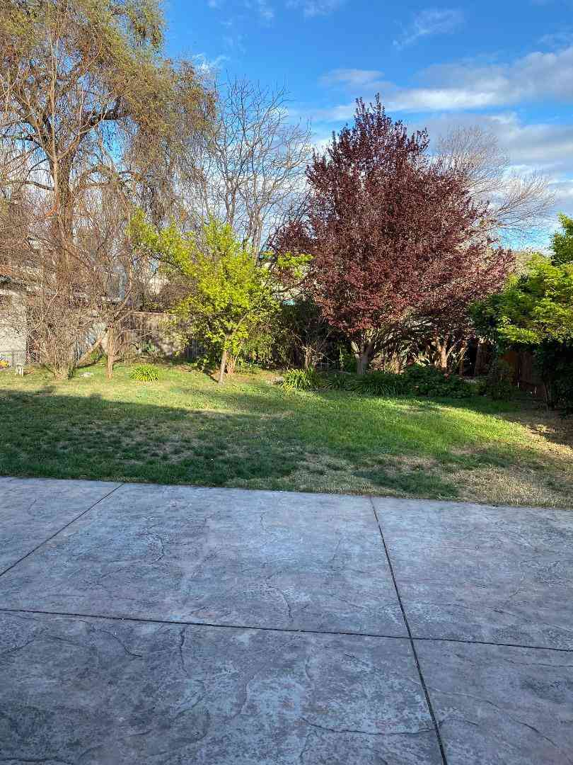 861 North Rengstorff Avenue, Mountain View, CA, 94043,