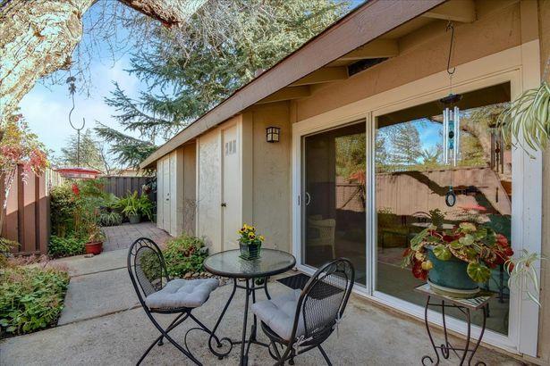 5020 Pine Tree Terrace