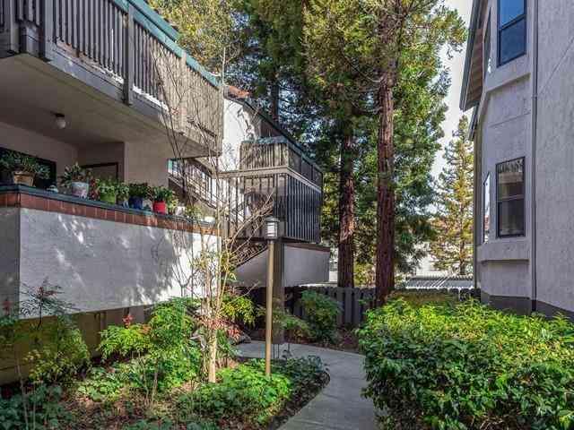 708 San Conrado Terrace #5, Sunnyvale, CA, 94085,