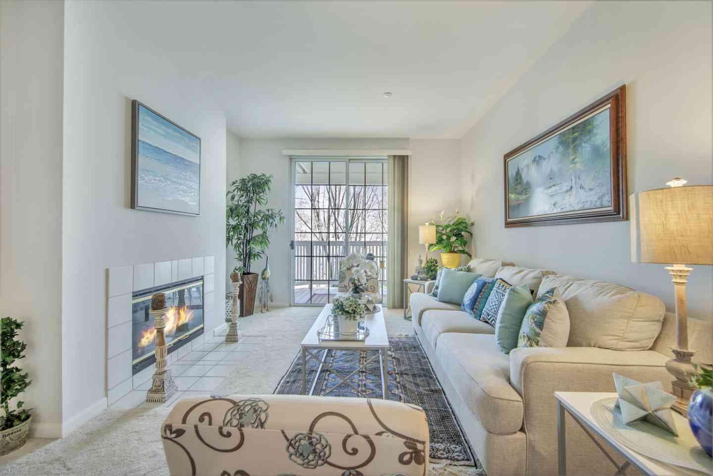 Sunny Living Room, 611 Arcadia Terrace #203, Sunnyvale, CA, 94085,