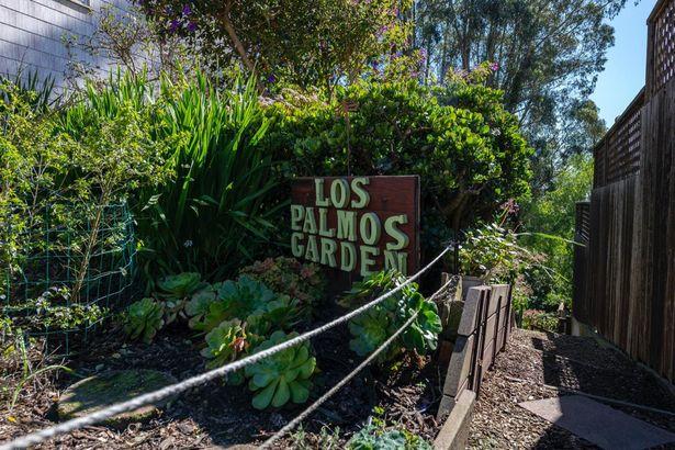 479 Los Palmos Drive