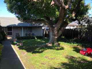 3057 Van Sansul Avenue, San Jose, CA, 95128,