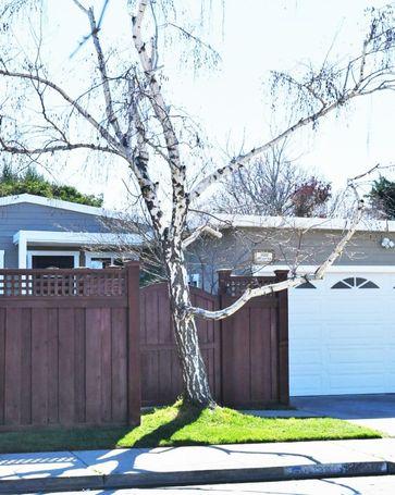 1602 Maxine Street San Mateo, CA, 94401