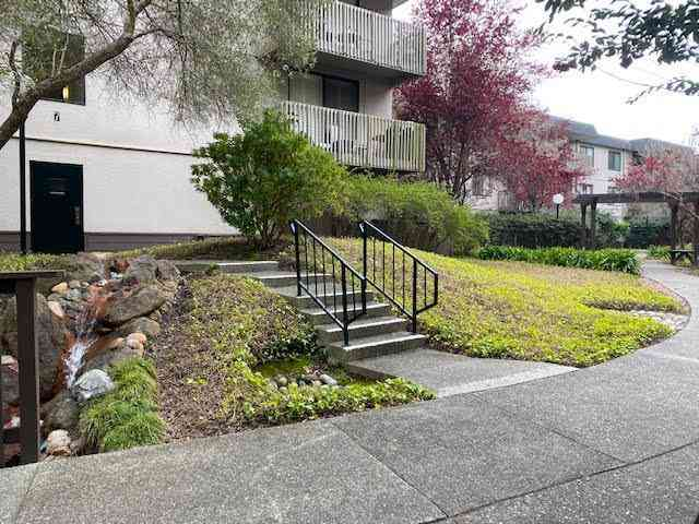 7156 Shelter Creek Lane #7156, San Bruno, CA, 94066,