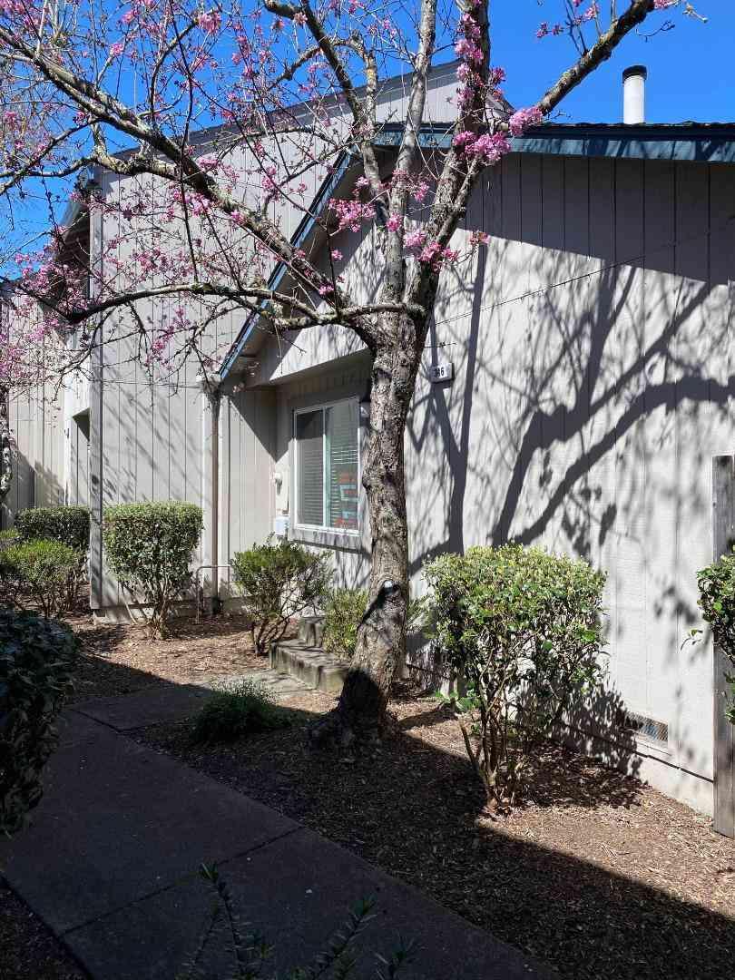 346 Harvest Lane, Santa Rosa, CA, 95401,