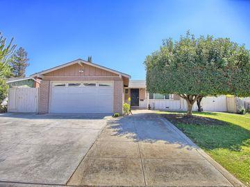 3352 Mount Mckinley Drive, San Jose, CA, 95127,