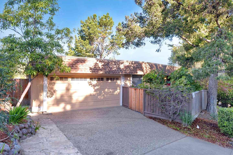 3401 Haskins Drive, Belmont, CA, 94002,