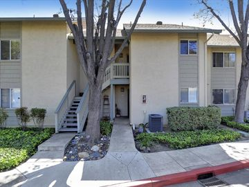 1036 Summerplace Drive, San Jose, CA, 95122,
