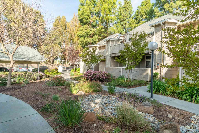 530 Shadowgraph Drive, San Jose, CA, 95110,
