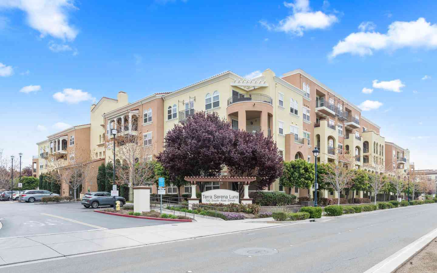 700 South Abel Street #213, Milpitas, CA, 95035,
