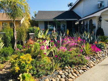 210 Blossom Hill road, San Jose, CA, 95123,