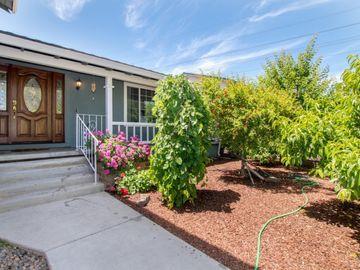 228 Castillon Way, San Jose, CA, 95119,