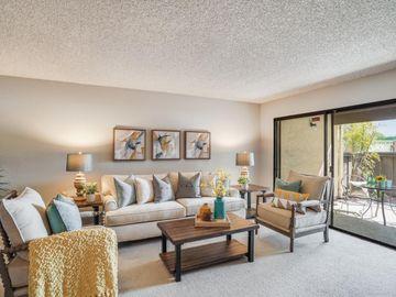 1001 East Evelyn Terrace #175, Sunnyvale, CA, 94086,
