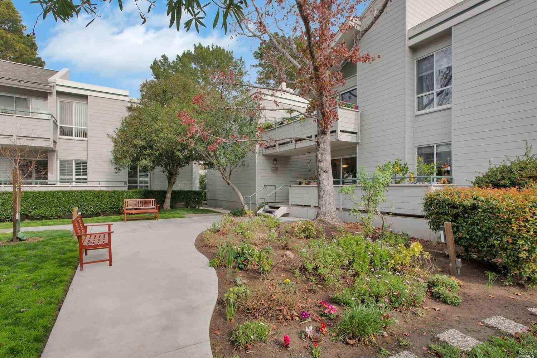 366 Larkspur Plaza Drive, Larkspur, CA, 94939,