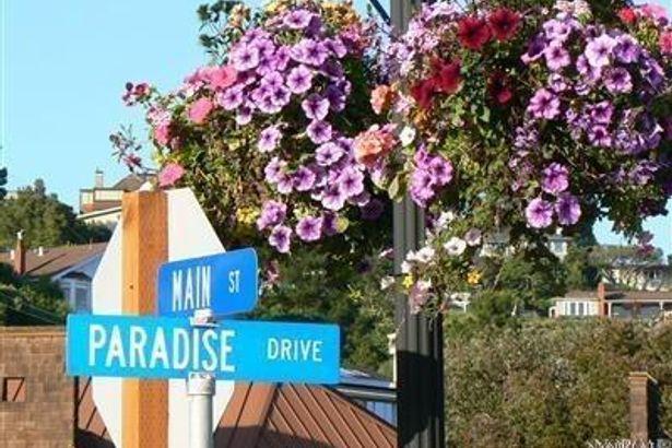 35 Mercury Avenue