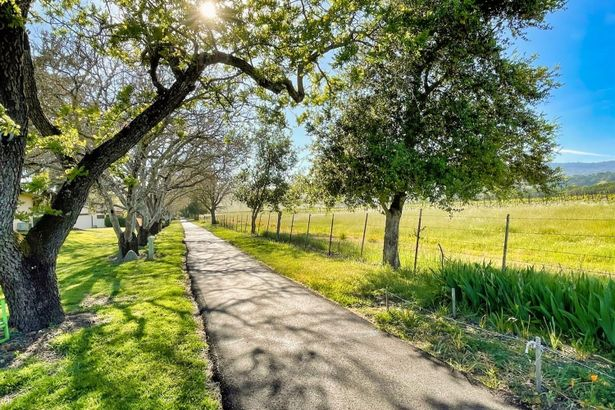 20705 Meadow
