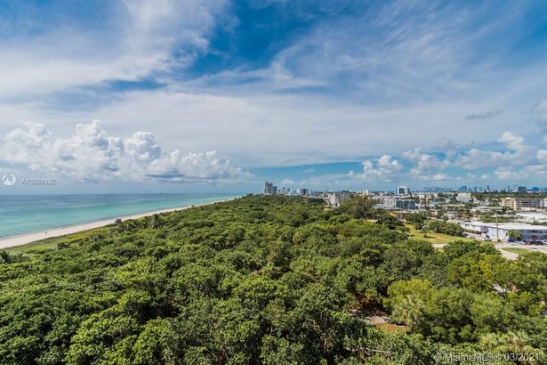 8701 Collins Ave #804