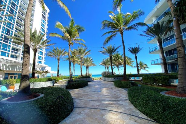 6799 Collins Ave #203