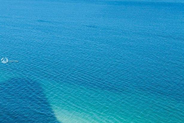 1830 S Ocean Dr #4210