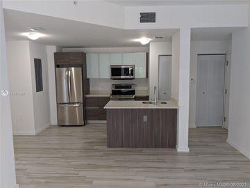 481 NE 29th St #306, Miami, FL, 33137,