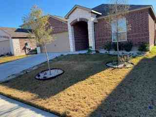 13717 Henry A Wallace LN, Manor, TX, 78653,